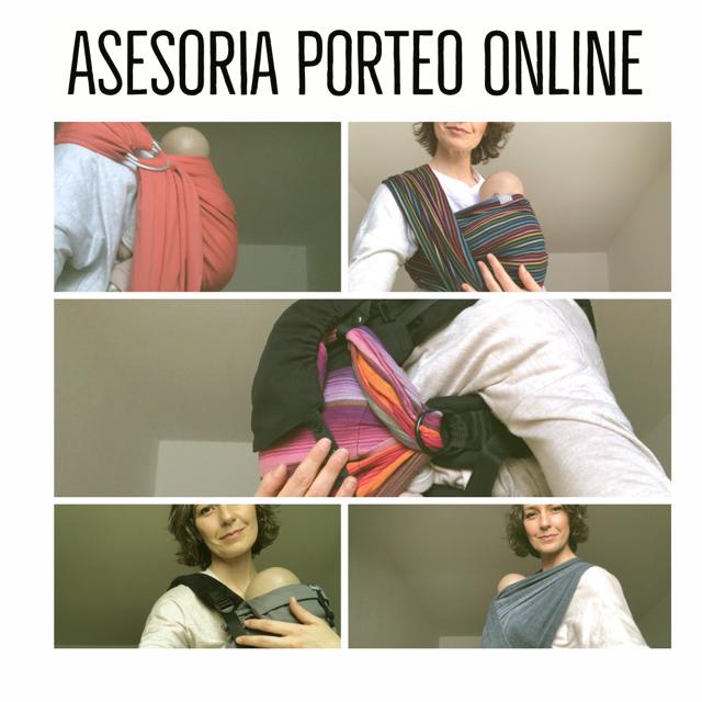 Asesoría Porteo online